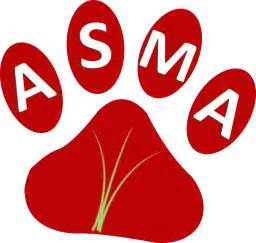 pengobatan asma secara alami hasbi htc