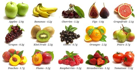 fruit high in fiber top 10 high fibre foods fitsaurus