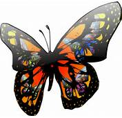 Butterfly With Lighting Effect Clip Art At Clkercom