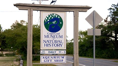 cape cod history cape cod museum of history in brewster