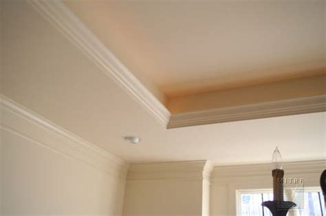 tray with rope lights crown molding and ceilings