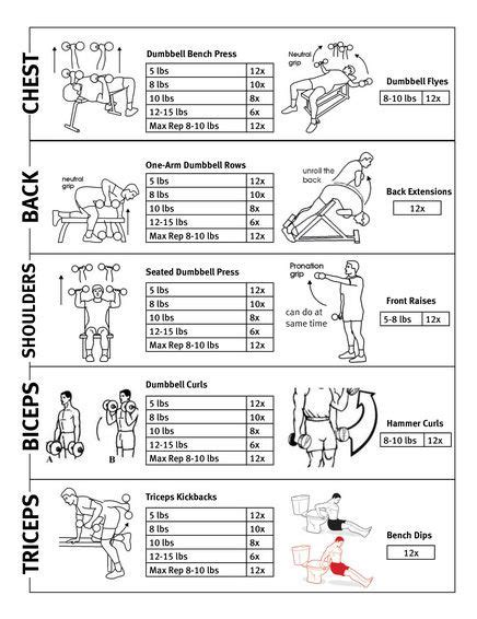 printable workout plan for the gym collection printable workout plans for men photos daily