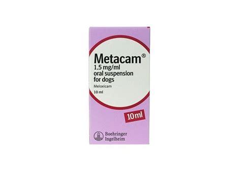 metacam dogs metacam l arthritis medication for dogs and cats medi vet