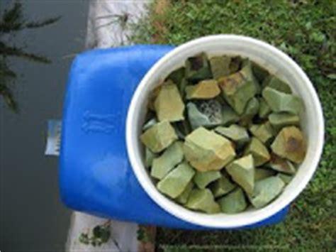 Harga Kolam Terpal Jogja budidaya lele dan gurame pada kolam terpal water