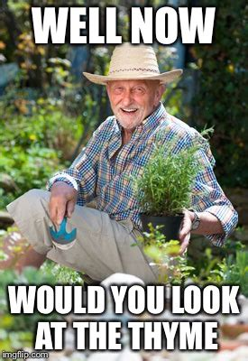 Gardening Memes - herb in the garden imgflip