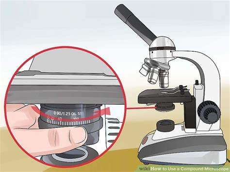 compound light microscope uses how to use a compound microscope 11 steps with pictures