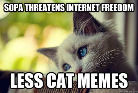 Cat Problems Meme - freedom meme memes