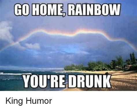 You Re Drunk Meme - go home rainbow you re drunk king humor drunk meme on sizzle