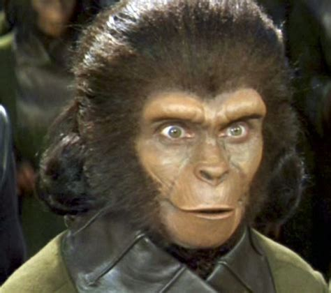 planet   dolls doll  day  oscar weekplanet   apes zira cornelius  dr zaius