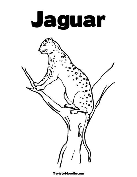 coloring pages of jaguar jaguar coloring pages coloring home