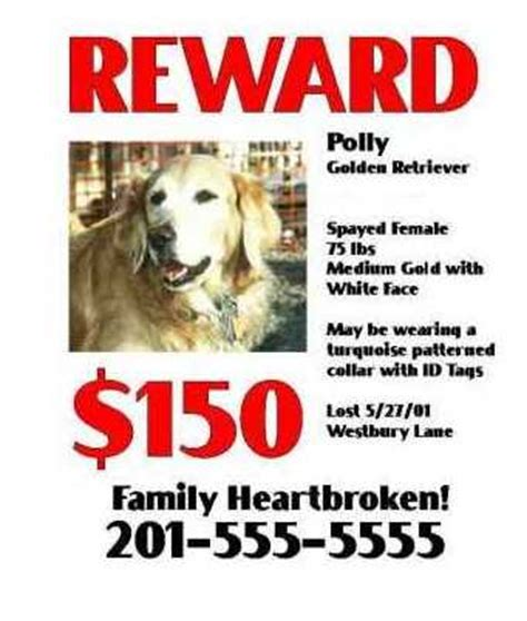 Golden Retriever Rescue Inc Nj Newsletter Summer 2001 Finding Your Lost Pet Lost Reward Poster Template