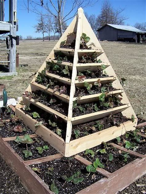 Strawberry Pyramid Planter Plans by 17 Best Images About Plant Pyramid On Gardens