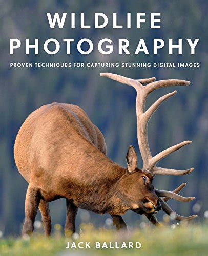 wildlife photography proven techniques for capturing