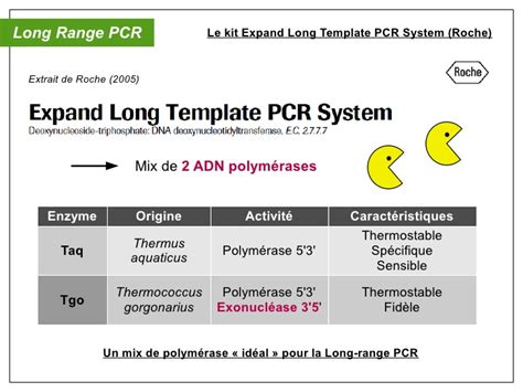 Oral Diagnostic Mol 233 Culaire Pcr Multiplex S 233 Rotypage Expand Template Pcr System Roche