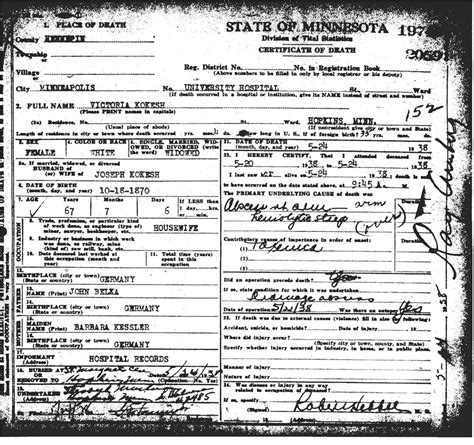 Hennepin County Minnesota Birth Records Page Title