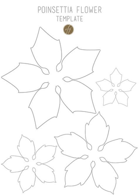 paper poinsettia flowers pattern diy paper poinsettia free template carta forbici gatto