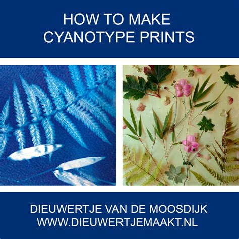 How To Make Cyanotype Paper - newsletter dieuwertjemaakt