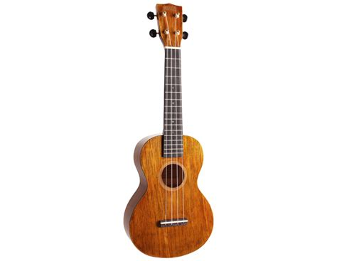 ukulele lessons in liverpool concert ukuleles anthonys music lessons liverpool