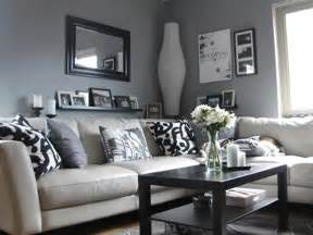 Ikea Livingroom Ideas by Ikea Living Room Ideas Pinterest Realestateurl Net