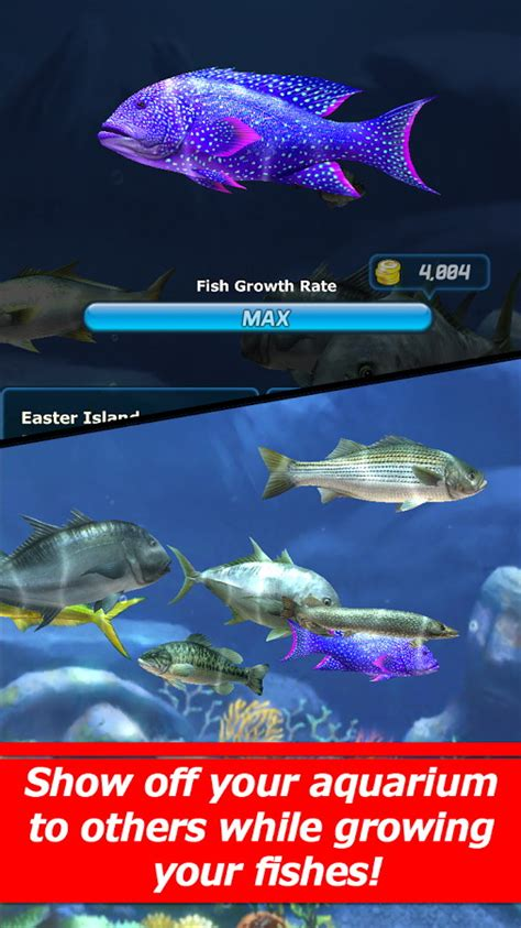 game ace fishing mod apk ace fishing wild catch makes fishing look easy androidshock