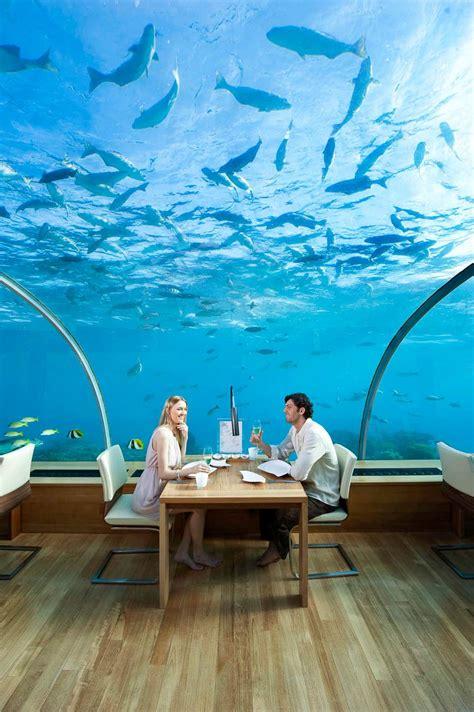 ithaa undersea restaurant il ristorante best free world s most exclusive design restaurants design home