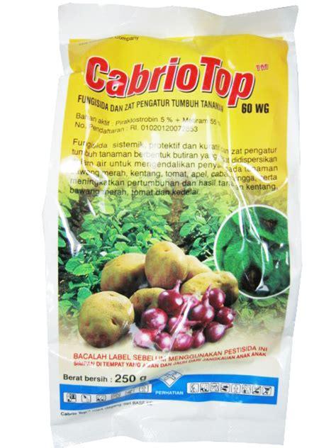 Obat Pembunuh Jamur Pada Tanaman obat pertanian pembunuh jamur fungisida cabriotop 60 wg