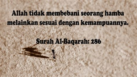 kata islami sedih kehidupan gambar islami