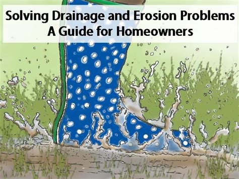 drainage solutions for backyards best 25 drainage solutions ideas on downspout