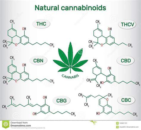chemical formulas  natural cannabinoids  cannabis