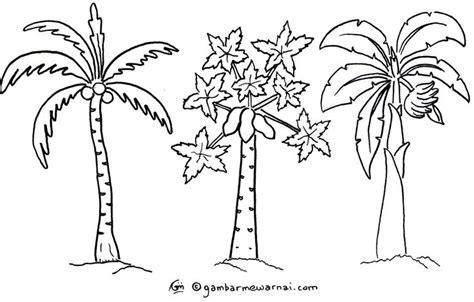 gambar mewarnai pohon terbaru mewarnai