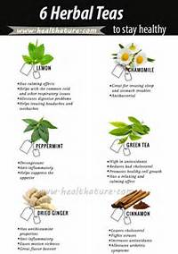 Popular Types Of Tea People Sip And Stay Healthy  Health Ature