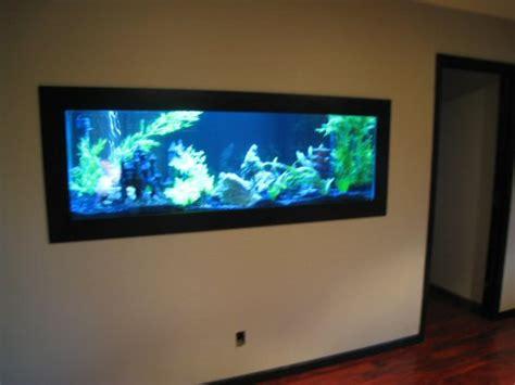 fish tank in wall amazing in wall fish tank 2017 fish fish tank in wall amazing in wall fish tank 2017 fish