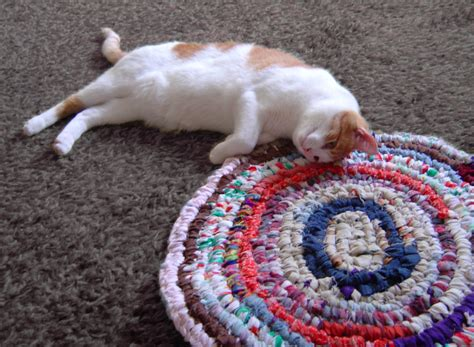 cats on rugs cat play rug rugs ideas