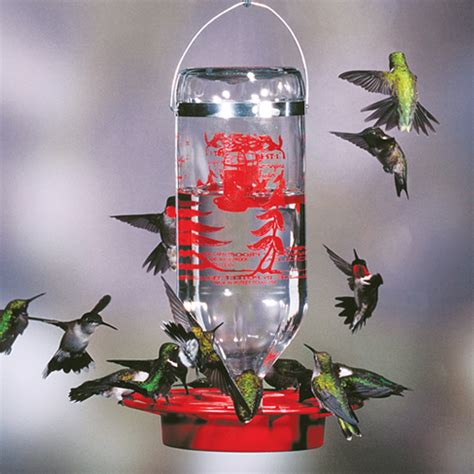 duncraft com best 1 hummingbird feeder 32 oz