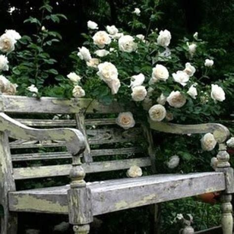 old garden bench vintage garden bench the garden outdoors pinterest