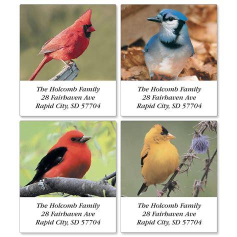 beautiful birds address labels current catalog