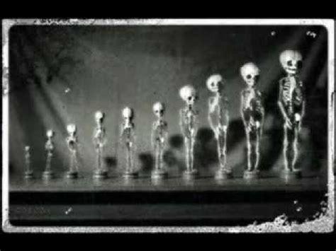 imagenes reales espeluznantes imagenes espeluznantes perturbadoras de miedo y terror