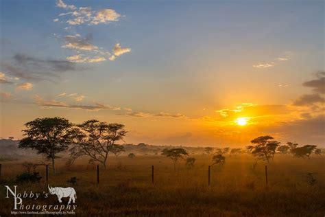 Tiny Plains 2 night hluhluwe safari package hluhluwe game reserve