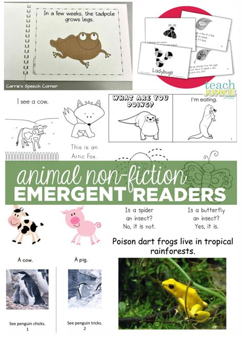 printable leveled readers free printable leveled readers leveled classroom library