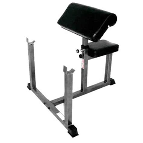 tds weight bench pacillo s preacher curl bench
