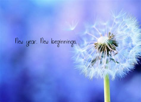 New Year New Beginnings 2 by New Year New Beginnings Poster Lena Keep Calm O Matic