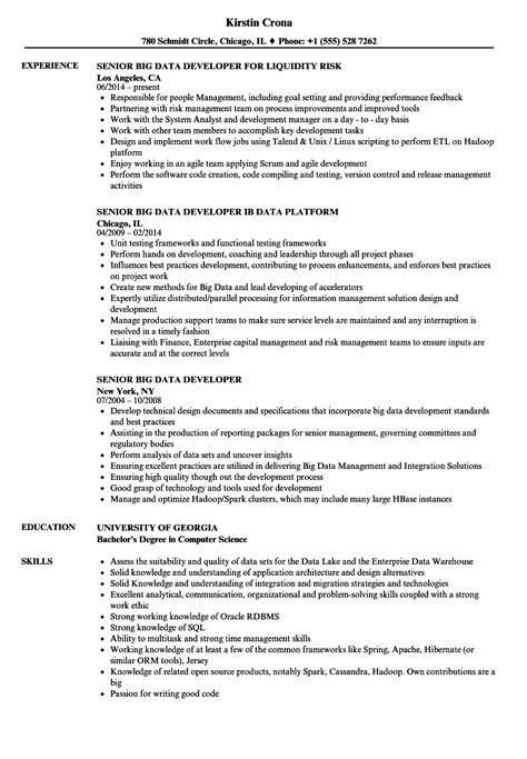 big data sle resume senior big data developer resume sles velvet