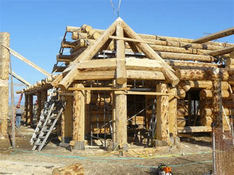 octagon log homes octagon log homes octagon log cabin 01 dcdcapital com
