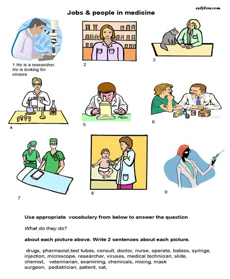 Pdf What Are Some Position in medicine vocabulary worksheet for students