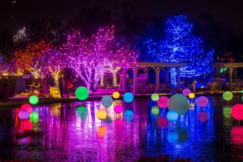 Botanic Gardens Denver Lights Blossoms Of Light And 18 Things To Do In Denver This Week 303 Magazine