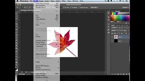 tutorial photoshop cs6 en pdf tutorial varita m 225 gica photoshop cs6 en mac y tips para