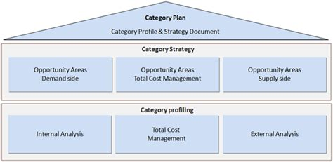 Category Management And The Challenges For Public And Private Sectors Capgemini Consulting Category Management Plan Template