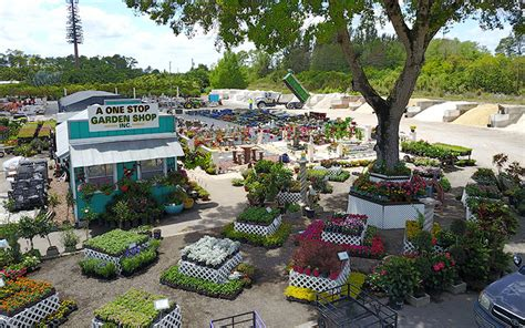 stop and shop trees a one stop garden shop offering plants trees sod cactus succulents mulch rock and more