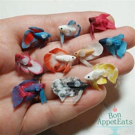 miniature betta fish wip by bon appeteats deviantart com on deviantart seasonal and c
