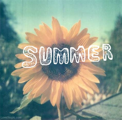 imagenes tumblr summer summer pictures photos and images for facebook tumblr